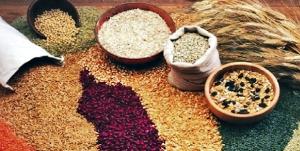 cereali-e-legumi